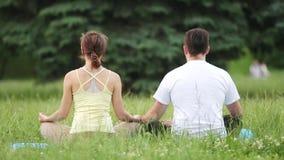 En man och en kvinna mediterar i salighet Unga yogainstruktörer övar i en stad parkerar på grönt gräs Se bakifrån lager videofilmer