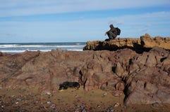 En man och hans hund vid havet Arkivfoto