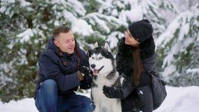 En man och en kvinna som sitter krama ett skrovligt för hundSiberian i vinterskogen som ler och ser de och på stock video