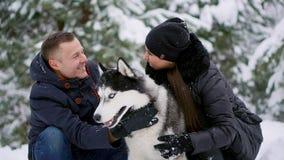En man och en kvinna som sitter krama ett skrovligt för hundSiberian i vinterskogen som ler och ser de och på lager videofilmer