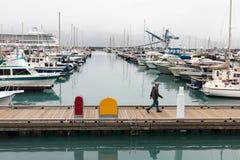 En man promenerar boardwalkden på hamnen Seward för det lilla fartyget med ett stort kryssningskepp i bakgrunden royaltyfri foto