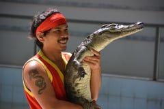 En man rymmer en krokodil i hans händer Krokodilshow på den Phuket zoo, Thailand - December 2015: krokodilshow royaltyfri foto