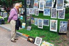 En man ser målningar som visas på den Gogol boulevarden Arkivfoto