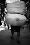 En man som bär en packe på hans baksida i Katmandu, Nepal Royaltyfria Foton