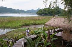 En man som går i lantligt av Thailand Arkivfoto