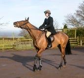 En man som rider en häst i engelsk jakt Royaltyfri Bild