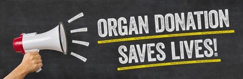 En man som rymmer en megafon - organdonation sparar liv royaltyfria bilder