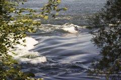 En man som wakeboarding på Stet Lawrence River i Montreal, Royaltyfri Fotografi