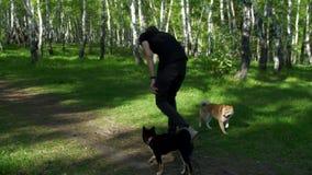En man spelar med en hund i träna lager videofilmer