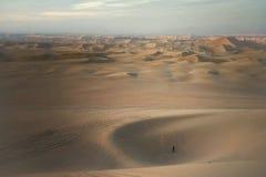 En man spelar sandboarding i efterrätten av Huacachina, Ica, Peru fotografering för bildbyråer