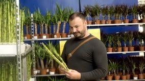 En man väljer växter i köpcentret Ikea stock video