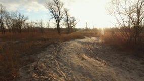 En mancyklist rider en mountainbike på en grusväg, lantlig väg i ett fält på solnedgången i kallt väder Disciplinkors arkivfilmer