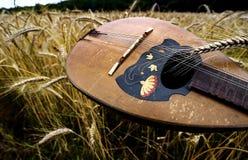 En mandolin på vete Royaltyfri Foto