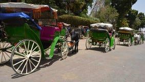 En Marrakesh, Marruecos de los carros Foto de archivo libre de regalías