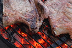 Flammande steak Arkivfoton