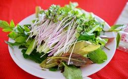 En maträtt för mycket ny grönsak Royaltyfria Foton
