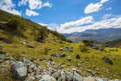 En Merida delle montagne andes venezuela fotografie stock