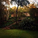 En mi jardín Imagenes de archivo