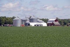 En Minnesota lantgårdplats Arkivfoton