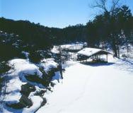 En Minnesota Winterscape Royaltyfria Foton