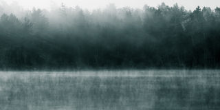En Misty Morning Royaltyfri Foto