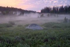 En Misty Sunrise i de Beartooth bergen Arkivfoton