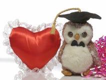 En mjuk leksak som bär ett avläggande av examenlock Royaltyfri Bild