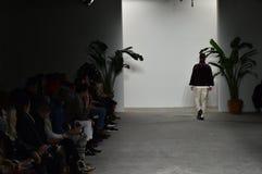 En modell går landningsbanan under Palmiersen Du Mal - landningsbana Royaltyfria Foton