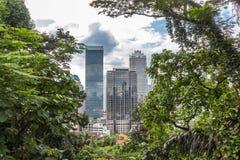 En modern stad som omges av djungeln Royaltyfri Fotografi