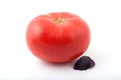En mogen tomat med ett basilikablad Arkivfoton