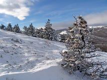 En montagnes Photographie stock libre de droits