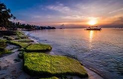 En morgon på en strand Arkivbilder
