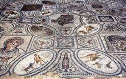En mosaik på Volubilis i Marocko inom huset av arbetena av Hercules Mosaiken daterar från den 1st århundradeANNONSEN Arkivbild