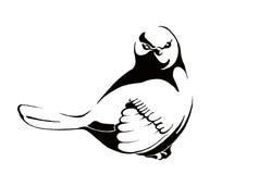 En mycket allvarlig fågel Royaltyfri Fotografi