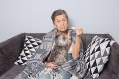 En mycket gammal hög Caucasian farmor med grått hår och djupa skrynklor sitter hemma på en soffa med en husdjurkatt royaltyfria foton