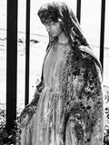En mycket mossiga Mary Royaltyfria Foton