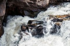 En nära sikt av den våta stenen i den snabba bergfloden Arkivfoto