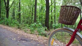 En närbild av ett cykelhjul med en korg av blommor, medan flytta sig, den manliga foten, vrider pedaler I sommaren i stock video