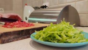 En närbild av en platta av fint - huggen av grön paprika mot bakgrunden av kvinnliga händer som skivar tomater stock video