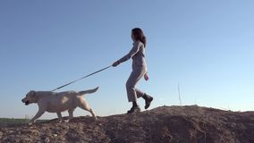 En nätt flicka leder en hund bredvid henne på vägen arkivfilmer