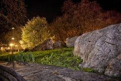 En natt i parkera Fotografering för Bildbyråer