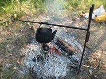 En nature, le thé bout sur un feu ouvert Photo stock