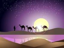 En naturlig tapet med mannen, kamlet och solen stock illustrationer