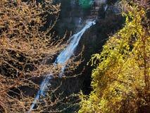 En naturlig vattenfall på överkanten av ett norr libanesiskt berg Arkivbild
