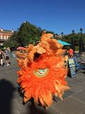 En New Orleans indier royaltyfri fotografi