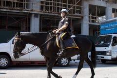 En New York polis som rider en häst runt om gatan Arkivfoton