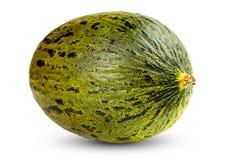 En ny hel Piel de sapo melon på vit Arkivfoto