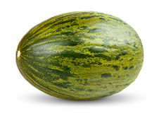 En ny hel Piel de sapo melon på vit Royaltyfria Bilder