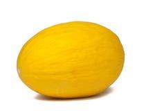 En ny och läcker melon Royaltyfri Foto