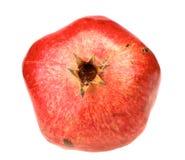 En ny röd pomegranate Arkivfoton